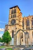 Helgon John Cathedral av Lyon, Frankrike royaltyfri bild