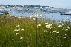 Helgon Peter Port, Guernsey Fotografering för Bildbyråer