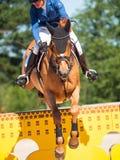 HELGON PETERSBURG-JULY 06: Rider Valeriya Sokolova på Sir Stanwel Fotografering för Bildbyråer