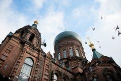 Helgon Sophia Cathedral i Harbin Arkivbilder