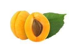 Helhet och halv aprikos med den isolerade stenen och bladet Royaltyfria Bilder