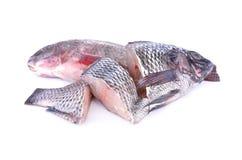 Helheten och delen klippte den nya Nile Tilapia fisken på vit backgroun Royaltyfri Fotografi