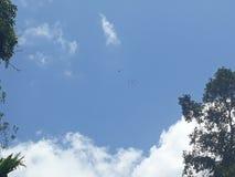 Helicóptero en el cielo foto de archivo libre de regalías