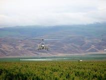 Helicóptero no campo Imagem de Stock
