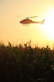 Helicóptero no por do sol Imagem de Stock