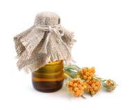 Helichrysum luteoalbum mit ätherischem Öl im pharmazeutischen bott Stockfotos