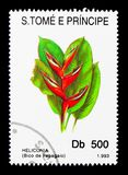 Heliconia,花serie,大约1993年 库存照片