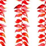 Heliconia-Aquarellmuster Vektor Tropisches Muster Stockbild
