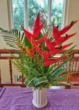 Heliconia flower in the vase. Royalty Free Stock Photography