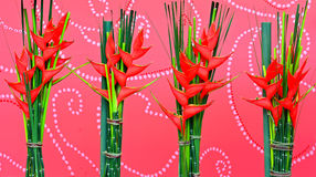 Heliconia flowers background Royalty Free Stock Image