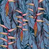 Heliconia kwiat na bananów liści wzorze niebieska tła ciemnej nieskończoności Obraz Stock