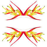 Heliconia Royalty Free Stock Images