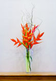 Heliconia wagneriana inflorescence Stock Photos