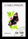 Heliconian motyl (Heliconius sp ), seria, około 1993 Fotografia Stock