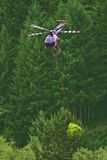 Helicopter Christmas Tree Harvest. This helicopter is picking up bundles of Christmas trees from one side of a field, carrying them to the other side, and Stock Photos