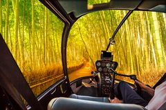 Helicopter in Arashiyama Bamboo grove. Helicopter cockpit inside the cabin flying in surreal bamboo grove at Sagano in Arashiyama, sunlit. Asian travel Stock Image
