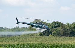 Helicopter cropduster. A helicopter is used to crop dust a field of corn royalty free stock image