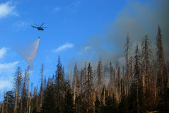 Helicopter Extinguish Fire Stock Photos