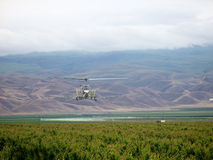 Helicopter In Field Stock Image