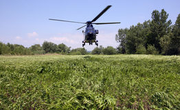 Helicopter landing. Helicopter lands on the grass that sways Stock Photography