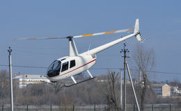 Helicopter R44 Robinson Raven 1 flying. Low over the ground Royalty Free Stock Image