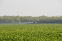 Helicopter spraying substances over green field Royalty Free Stock Image
