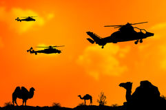 Helicopters or choppers silhouette on desert sunset background Royalty Free Stock Image