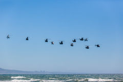 Helicopters Military Formation Flying Royalty Free Stock Photos