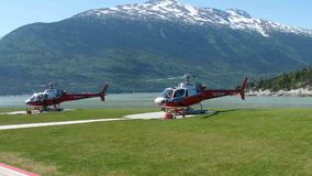Helicopters used for tours over alaska's glaciers stock video