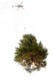 Helikopter die een Kerstmisboom dragen royalty-vrije stock foto