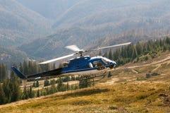 Helikopter Ecureuil AS350 B3 under landning fotografering för bildbyråer