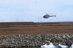 Helikopter landen omringd door troep van vogels Problemen en hindernissen voor vlucht Ongevallenrisico stock afbeelding