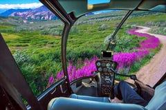 Helikopter op Denali NP stock foto's