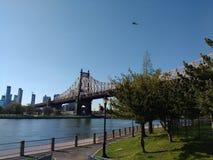Helikopter ovanför den Queensboro bron, Roosevelt Island, NYC, NY, USA Arkivbilder