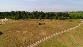 Helikopter przyjeżdżający na zieleni polu Helikopter lądował na żółtej trawie, chmurny dzień Latający truteń i zielony pszeniczny obrazy royalty free