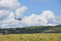 Helikopter som flyger över ett fält av havre Arkivbild