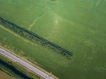 Helikopterhommel geschoten bos met weg stock foto