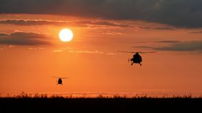 Helikoptrar på sommarsolnedgången Arkivbild