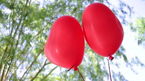 Helium balloons heart on a background of trees and sky.  stock video footage