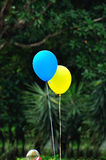 Helium balloons Stock Images