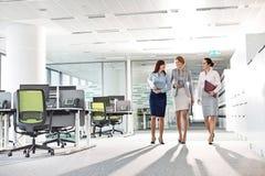 Hellångt av affärskvinnor med mappmappar som i regeringsställning går arkivfoto