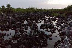 Hell in Grand Cayman. Grand Cayman, field of rocks called hell stock photo