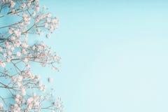 Hellblauer Blumenhintergrund mit weißen Gypsophilablumen und Kopienraum für Ihr Design stockfotos