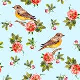 Hellblaues nahtloses Muster mit Heckenrosen und Vögeln Stock Abbildung