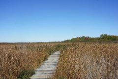 Hellcat trail in Parker River National Wildlife Reservation stock images