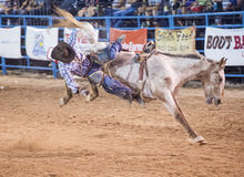 Helldorado days rodeo Royalty Free Stock Photos