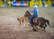 Helldorado days rodeo Royalty Free Stock Image