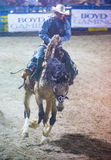 Helldorado days Rodeo Royalty Free Stock Images