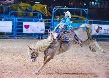 Helldorado days Rodeo Stock Photography