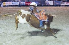 Helldorado days Rodeo Royalty Free Stock Photography